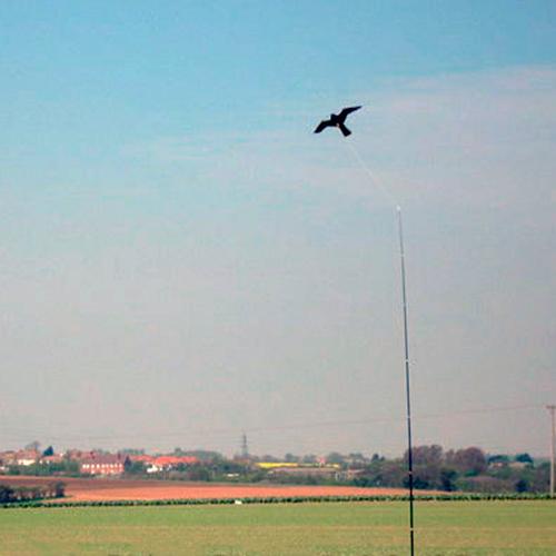 Работа отпугивателя птиц Хищник-2