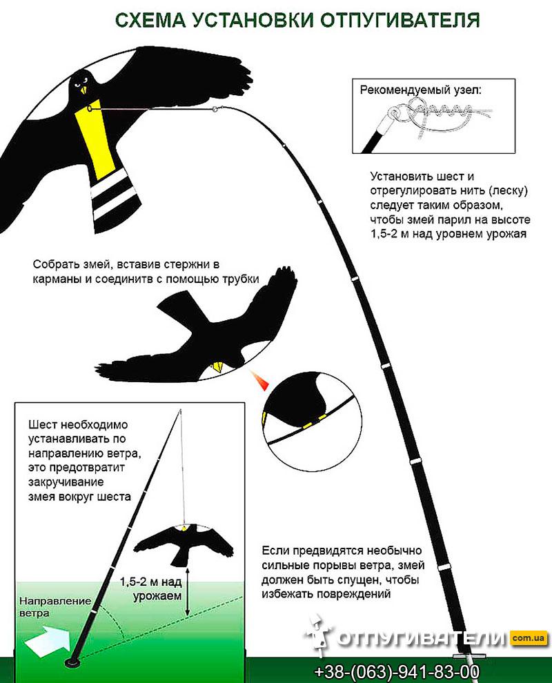 Схема установки визуального отпугивателя птиц Крук