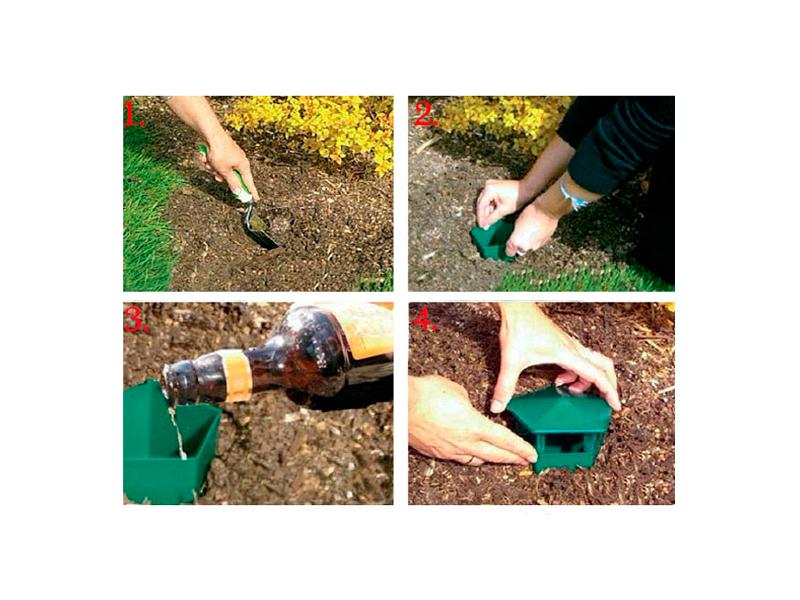 Алгоритм установки ловушки для слизней и улиток