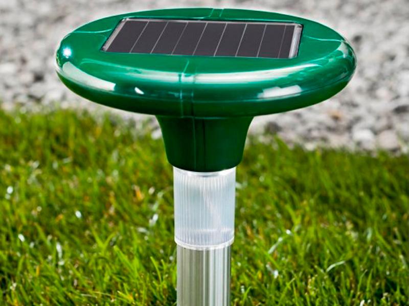 Процесс работы отпугивателя кротов на солнечной батарее PestBye LED+