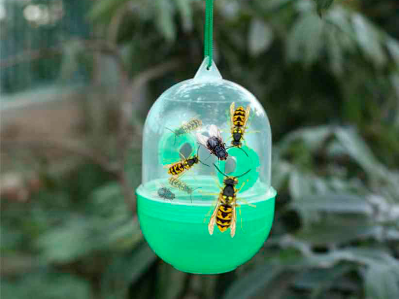 Ловушка для ос, мух и других летающих насекомых Wasp Trap в действии