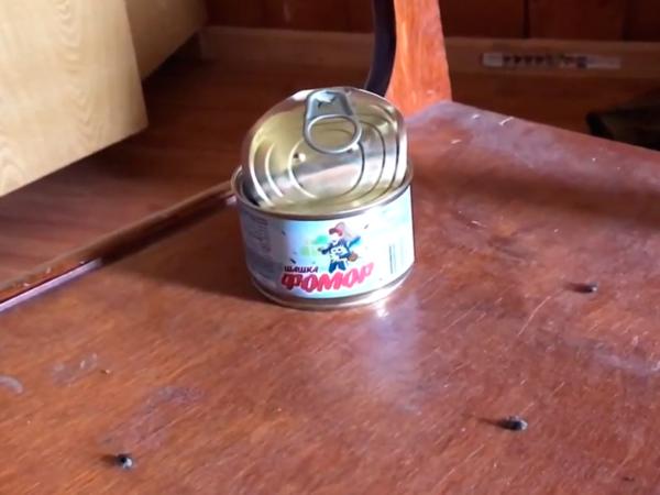 Инсектицидное средство «шашка «ФОМОР» (100 г)
