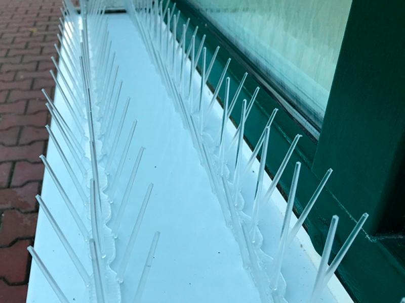 Процесс защиты подоконника от птиц шипами Jacopic