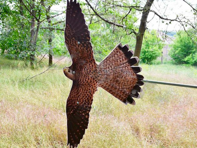 Процесс работы отпугивателя птиц Хищник-3
