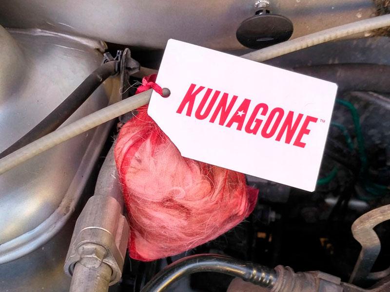Отпугиватель куниц KUNAGONE, установленный под капот авто