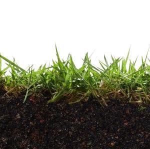 Раскислители почвы